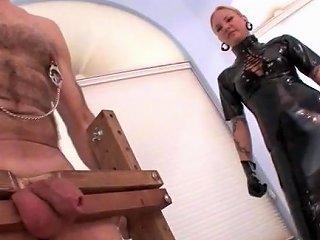 Femdom Extreme Cbt On Dicklets Compiltion Free Porn 24